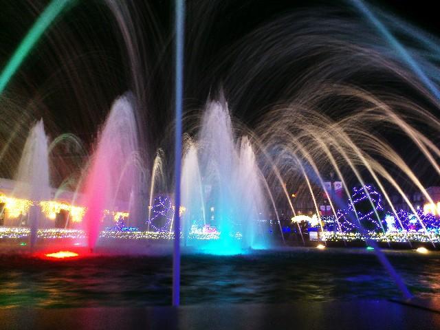 2015~2016浜松のイルミネーションフラワーパークは中学生無料!?開催日と見所は?
