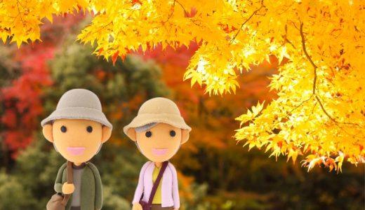 愛知で紅葉と桜を一緒に見れる穴場が!?イベントや見頃はいつ?
