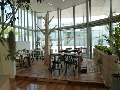 岡崎市美術博物館併設のレストランYOUR TABLE