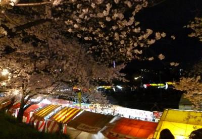 夜桜と屋台2