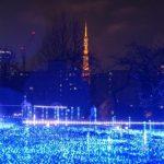 赤坂イルミネーション2016クリスマス大人デートプラン3選!開催期間や時間も
