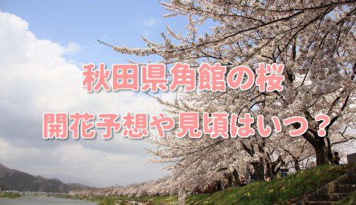 角館桜まつり2018武家屋敷の開花や見頃はいつ?おすすめ見所コースは?