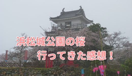 浜松城公園の桜お花見は混む?おすすめ時間帯と実際に行った感想も!