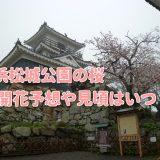 浜松城公園の桜2019開花状況や見頃はいつ?ライトアップと駐車場情報も