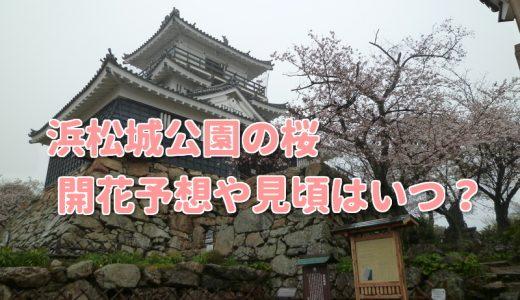 浜松城公園の桜2018開花状況や見頃はいつ?ライトアップと駐車場情報も