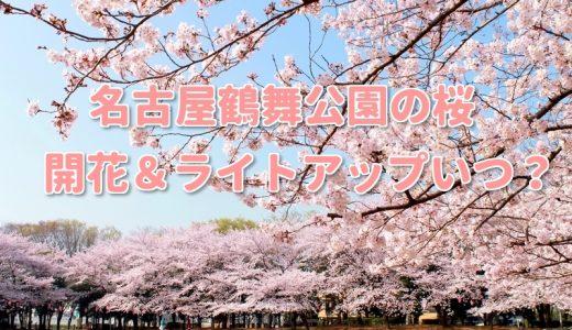 名古屋鶴舞公園桜2018開花ライトアップいつ?見所や混雑撮影スポットは?