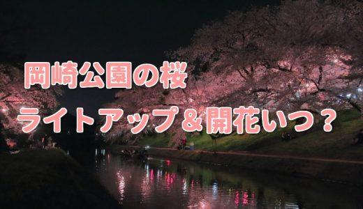 岡崎公園2018桜まつりライトアップと開花いつ?混雑やより楽しむ秘訣は?