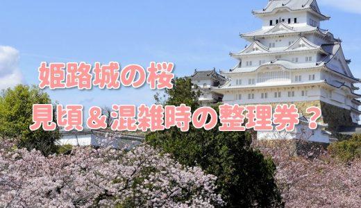 2019姫路城桜の見頃や混雑時の整理券とは?見所とより一層楽しむ秘訣!