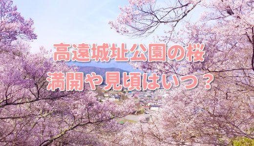 2018高遠城址公園の桜の満開や見頃はいつ?駐車場や渋滞回避と見所は?